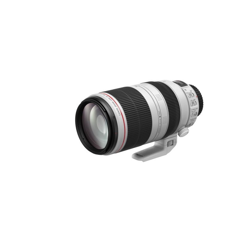 Canon EF 100-400/4,5-5,6 L IS USM II